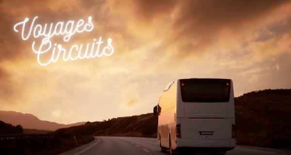 Location de minibus et d'autocars pour des groupes